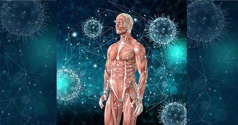 Prevenção de doenças - Microfisioterapia