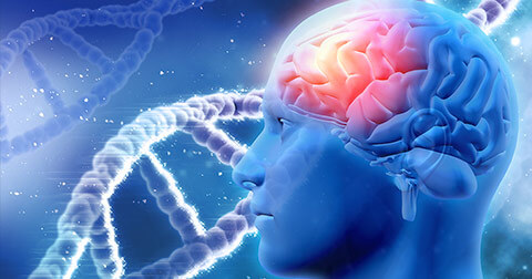 memoria-celular-microfisioterapia